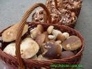 Білі гриби та підпеньки із Комарницьких гір