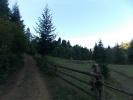 Дорога з села Кам'янка