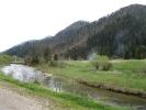 Річка Головчанка біля схилів гори Маківка